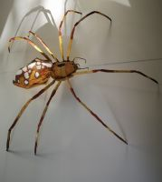 insekten_04